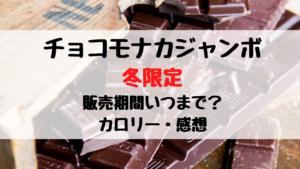 チョコモナカジャンボ冬限定の販売期間はいつまで?カロリーや感想も
